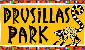 Drusillas Park