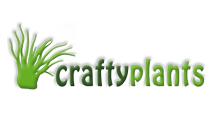 Crafty Plant