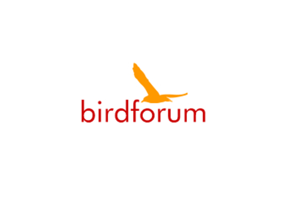 Free Bird Forum Shop Promo & Voucher Codes - 2017