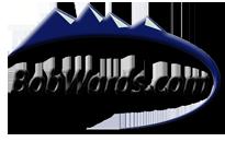 BobWards Coupon & Deals