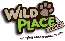 Wild Place Discount Codes & Deals