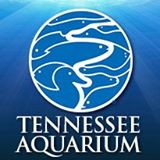 Tennessee Aquarium Coupon & Deals 2017