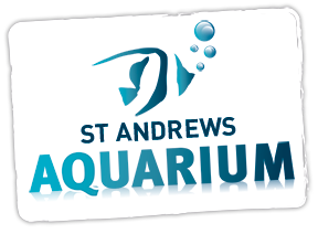 St Andrews Aquarium Discount Codes & Deals