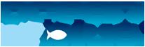 Ocean Blue Coupon & Deals 2017