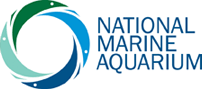 National Marine Aquarium Discount Codes & Deals