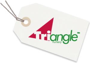 Triangle Nursery Discount Codes & Deals