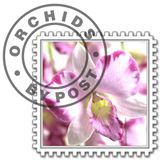 Orchids by Post Discount Codes & Deals