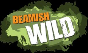 Beamish Wild Discount Codes & Deals