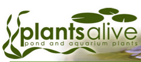 Plants Alive Discount Codes & Deals