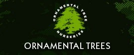 Ornamental Trees Discount Codes & Deals