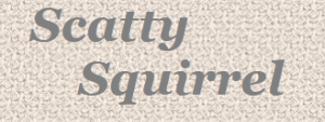 Scatty Squirrel Discount Codes & Deals