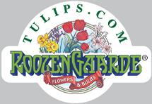Tulips.com Promo Code & Deals 2017