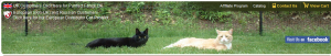 Purrfect Fence Coupon Code & Deals