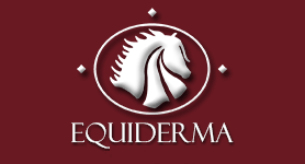 Equiderma Coupon & Deals 2017