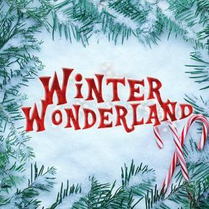 Winter Wonderland Manchester Discount Codes & Deals