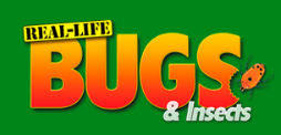 Real life Bugs Discount Codes & Deals