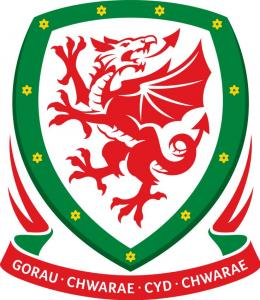 Wales Football Shop Discount Codes & Deals