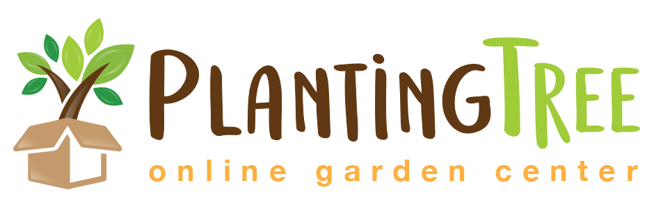 The Planting Tree Coupon & Deals