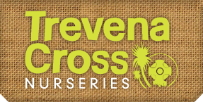 Trevena Cross Discount Codes & Deals