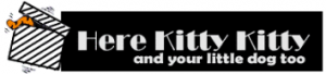 Here Kitty Kitty Discount Codes & Deals
