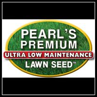 Pearl's Premium Discount Codes & Deals