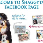 ShaggyTag Discount Codes & Deals
