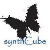 SynthCub Discount Codes & Deals