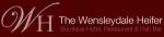 Wensleydale Heifer Discount Codes