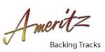 Ameritz Discount Codes