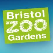 Bristol Zoo Discount Code