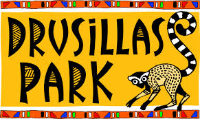 Drusillas Park Discount Code
