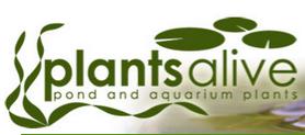 Plants Alive Discount Codes & Deals