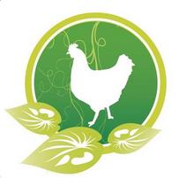 Garden Feathers Discount Codes & Deals